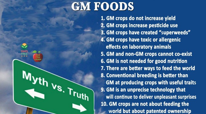 Why we dont need gmos