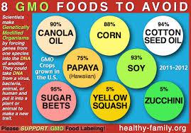 8 GMO Foods